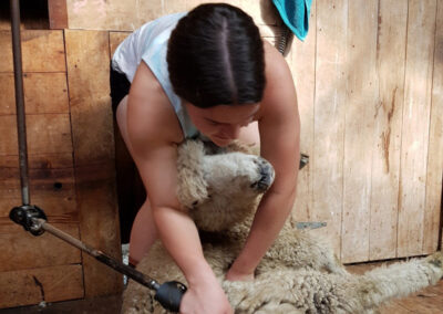 Students of the BOP Futures Academy - Farming Shearing Training